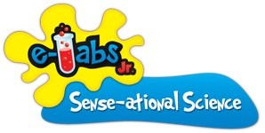 Sense-ational Science e-Labs Logo